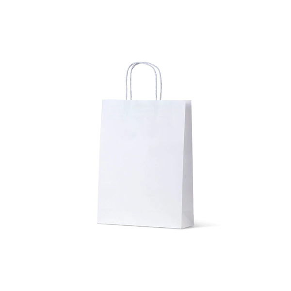 White Kraft Paper Gift Bag Small - 250PK