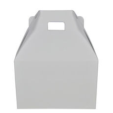 Carry Pack Large - White Gloss