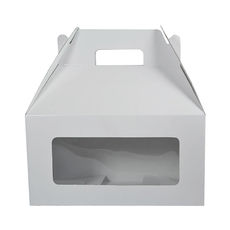 Carry Pack Large with Window - White Gloss