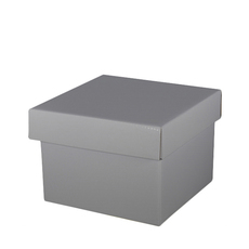 Large Gift Box - Gloss Silver
