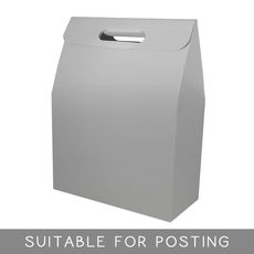 Gable Top Hamper Box - Gloss Silver  (Discontinued – Limited Stock Available)