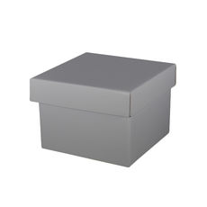 Medium Gift Box - Gloss Silver