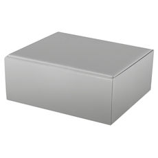 Large Shipper Box - Gloss Silver