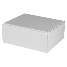 Large Shipper Box - Gloss White