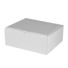 Small Shipper Box - Gloss White