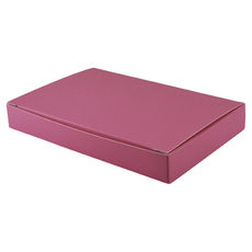 Large Keyring Box - Matt Pink