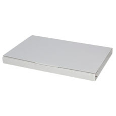 Book Box Twist Mailer 1 - Kraft White