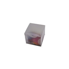 Transparent Gift Box - Small