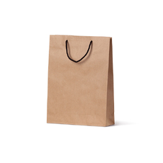 Deluxe Brown Kraft Paper Gift Bag Small - 250PK