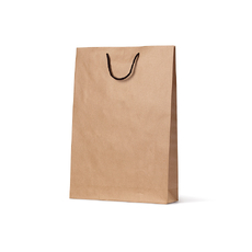 Deluxe Brown Kraft Paper Gift Bag Medium - 250PK
