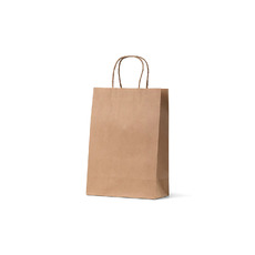 Brown Kraft Paper Gift Bag Junior - 250PK