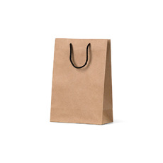 Deluxe Brown Kraft Paper Gift Bag Junior - 250PK