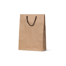 Deluxe Brown Kraft Paper Gift Bag Midi - 250PK