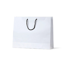 Deluxe White Kraft Paper Bag Boutique - 250PK