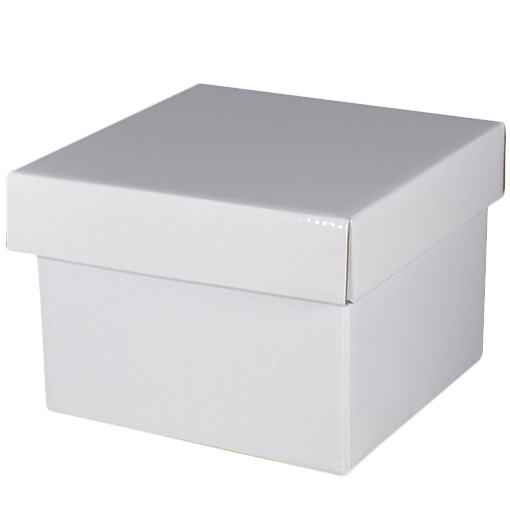 Gloss White Large Gift Box