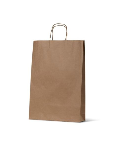Medium Budget Kraft Brown Gift Bag with handles - 250PK