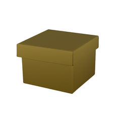 Medium Gift Box Base & Lid - Budget Gold Gloss
