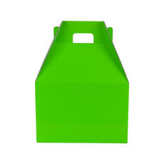 Carry Pack Small 19266 - Premium Gloss Lime Green
