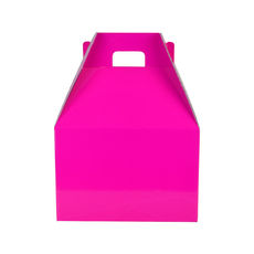 Carry Pack Small 19266 - Premium Gloss Hot Pink