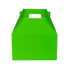 Carry Pack Large 19267 - Premium Gloss Lime Green
