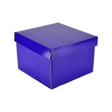Medium Gift Box 19278 - Premium Gloss Purple