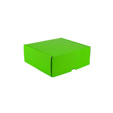 One Piece Postage & Gift Box 5317 - Premium Gloss Lime Green (White Inside)