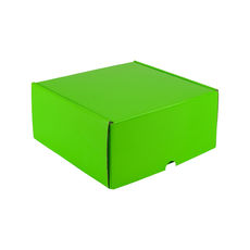 One Piece Postage & Gift Box 5318 - Premium Gloss Lime Green (White Inside)