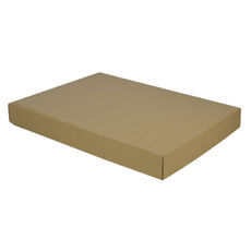 A3 Cardboard Gift Box - 50mm High - Base & Lid