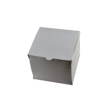 Transparent Gift Box - Small - Solid White