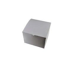 Transparent Gift Box - Medium - Solid White
