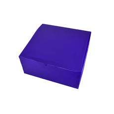 Transparent Gift Box - Large - Frosted Purple