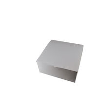 Transparent Gift Box - Large - Solid White