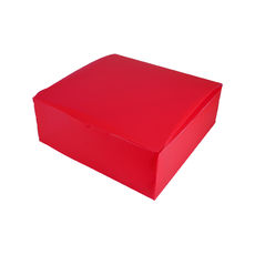 Transparent Gift Box - Extra Large - Frosted Red
