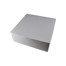 Transparent Gift Box - Extra Large - Solid White