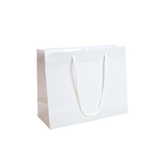 White Gloss - European Gloss Laminated Gift Bag - Extra Small - 200 PACK