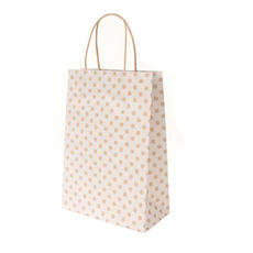White Spot Kraft Junior Paper Bag - 100PK