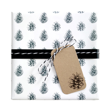 Petite Pine Cones Wrap Wrapping Paper (500mm x 50 Metres)